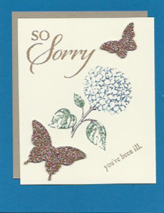 So Sorry and Best of Flowers card