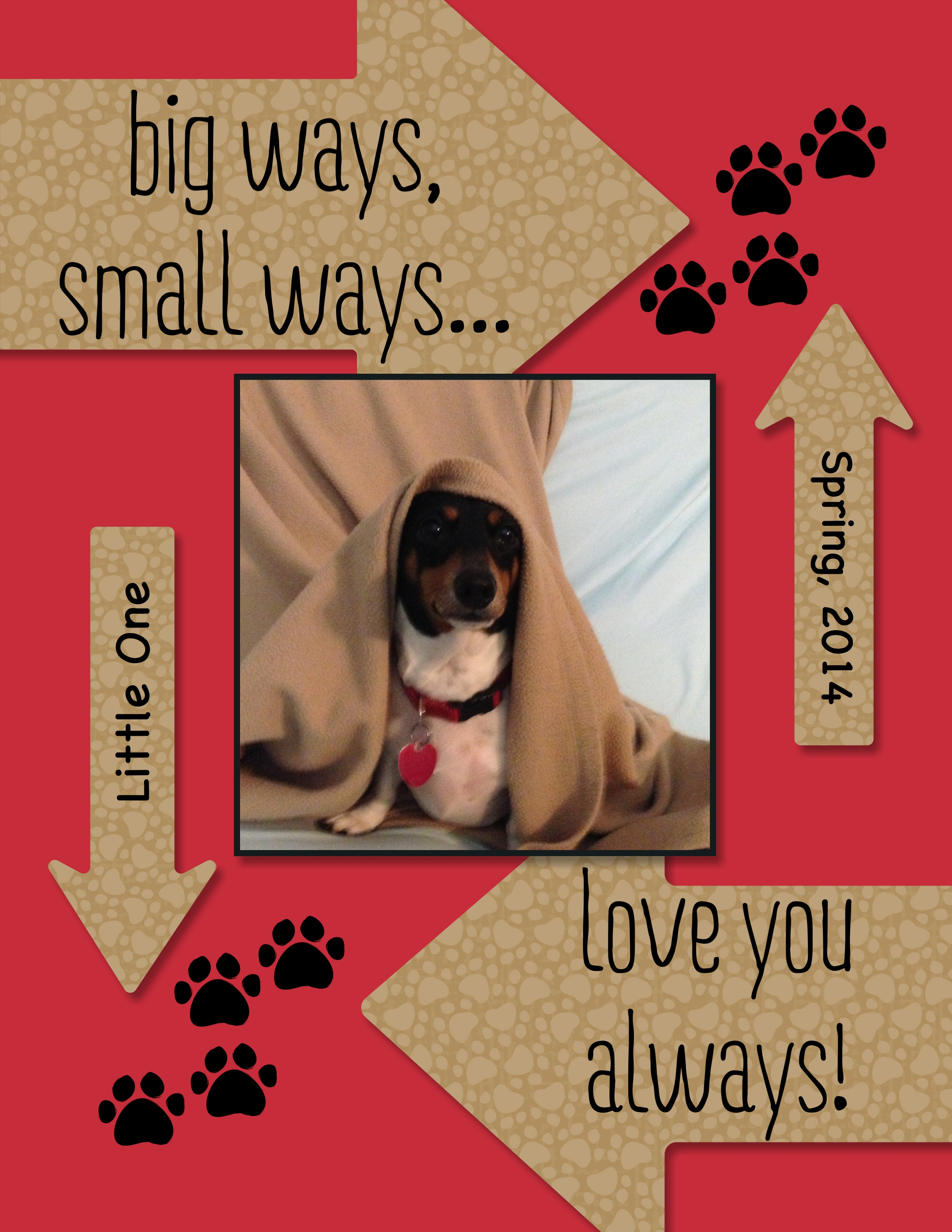 Something to Say digital scrapbook page of my mini dachshund